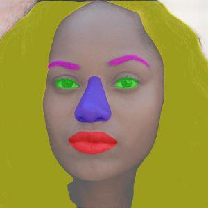 Facial feature segmentation example